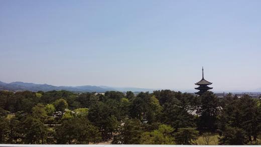 県庁屋上から興福寺